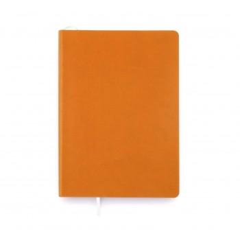 Записная книжка А5 Picasso